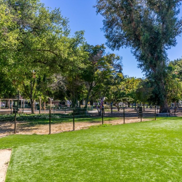 The James Apartments  - Dog Park with beautiful and green landscape